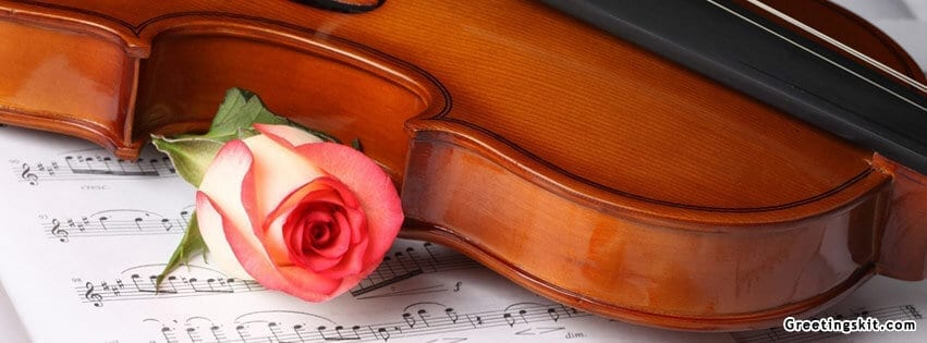 Violin and Rose FB Cover