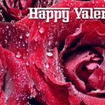 Happy Valentine's Day FB Timeline Cover Image
