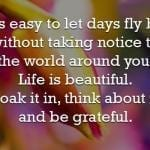 LIfe is Beautiful – Picture Quote