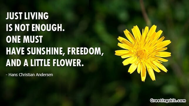 Just Living – Picture Quote