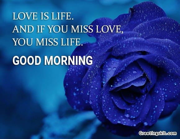 Love is life – Picture Quote